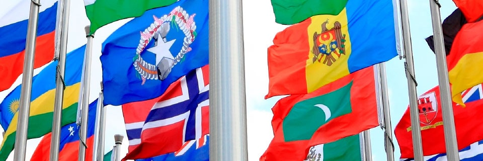 International Flags & Bunting Category Image