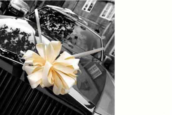 Ivory premium wedding car decoration kit partyrama ivory premium wedding car decoration kit product image junglespirit Gallery