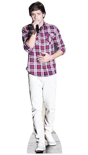 One Direction Liam Payne Singing Lifesize Cardboard Cutout - 178cm Product Gallery Image