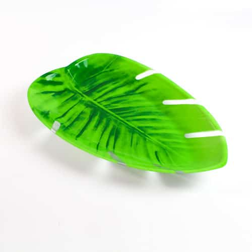 Tropical Jungle Snack Tray – 15.75 Inches / 40cm