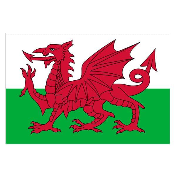 Welsh Wedding Invitations: Welsh Flag 5ft X 3ft