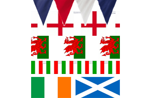 6 Nations Flag Buntings