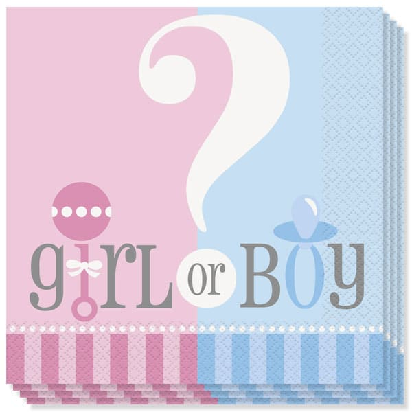 Gender Reveal Theme 2 Ply Luncheon Napkins - 13 Inches / 33cm - Pack of 20