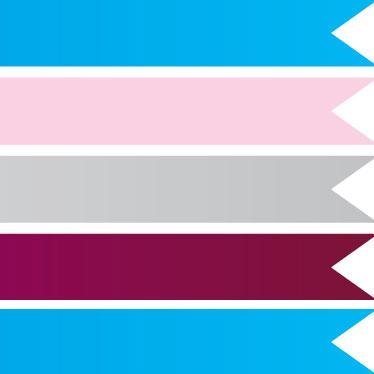 Plain Colour Ribbons