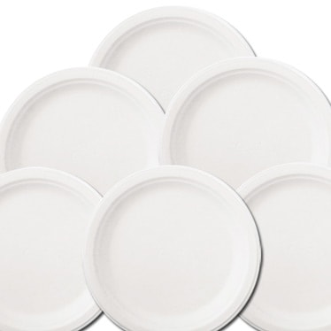 Economy Party Plate