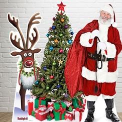 Luxury Christmas Crackers Uk