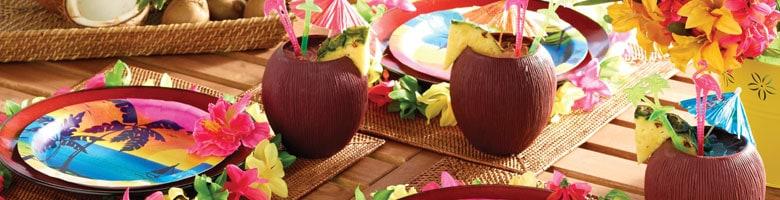 Aloha Summer Party Supplies Top Image