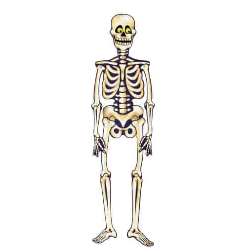 Halloween Jointed Skeleton 90cm Product Image