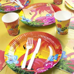 Aloha Theme Party Supplies Category Image