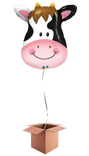 Cow Face Farm Animals Helium Foil Giant Qualatex Balloon - Inflated Balloon in a Box