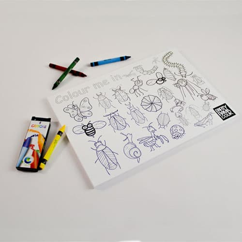 Insects Themed A4 Colouring sheet With 4 Crayons Product Image