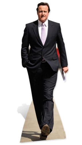 David Cameron Lifesize Cardboard Cutout - 183cm Product Gallery Image