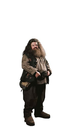 Harry Potter Hagrid Mini Cardboard Cutout 91cm Product Gallery Image