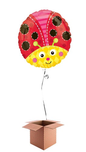 Lady Bug Round Foil Balloon - Inflated Balloon in a Box Product Image