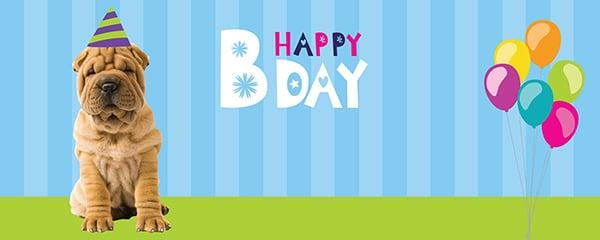 Happy Birthday Shar Pei Design Medium Personalised Banner - 6ft x 2.25ft