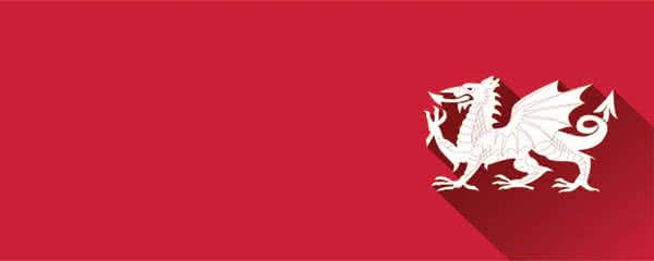 Welsh Dragon Red Design Small Personalised Banner - 4ft x 2ft
