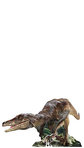 Natural History Museum Velociraptor Dinosaur Lifesize Cardboard Cutout 155cm Product Gallery Image