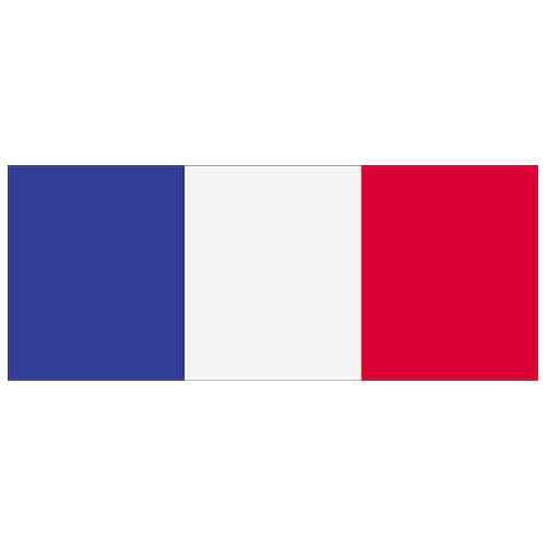 France Flag PVC Party Sign Decoration 60cm x 24cm