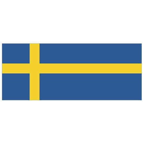 Sweden Flag PVC Party Sign Decoration 60cm x 24cm