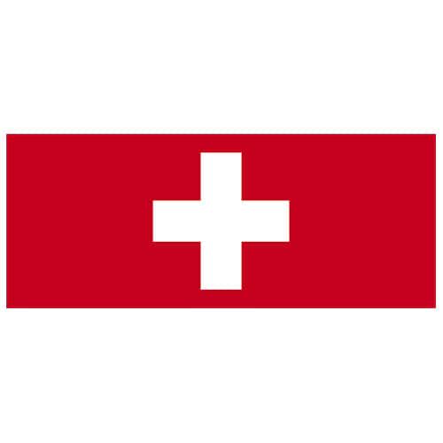Switzerland Flag PVC Party Sign Decoration 60cm x 24cm