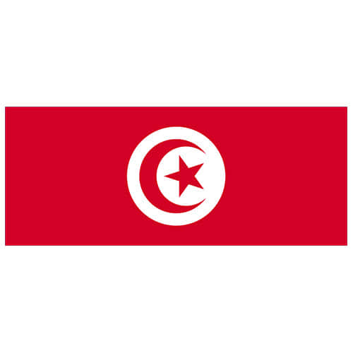 tunisia-flag-pvs-party-sign-decoration-product-image