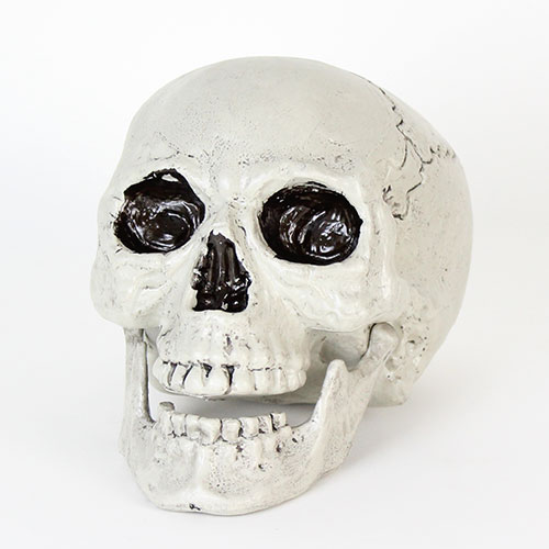 Skull With Movable Jaw Halloween Decoration 20cm Product Gallery Image