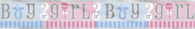 Gender Reveal Baby Shower Foil Banner 3.65m