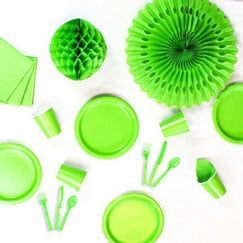 Lime Green Party Supplies