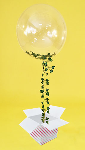 Clear Bubble Qualatex Balloon Stuffed With Ivy Foliage And Tail - Inflated Balloon in a Box