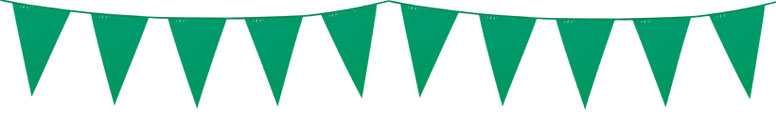 Green Plastic Pennant Bunting 10m