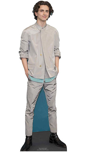 Timothee Chalamet Jacket Star Mini Cardboard Cutout 90cm Product Gallery Image