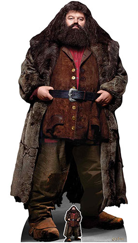 Rubeus Hagrid Half Giant Half Human Harry Potter Lifesize Cardboard Cutout 197cm Product Gallery Image