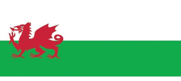St Davids Day Personalised Banners
