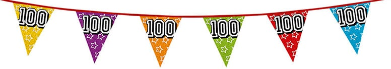 Age 100 Holographic Foil Pennant Bunting 8m