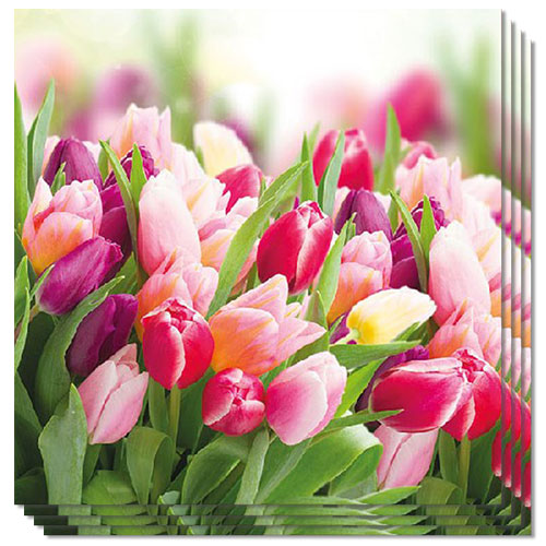 Glorious Tulips Premium Luncheon Napkins 3Ply 33cm - Pack of 20