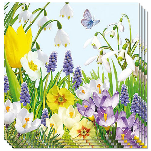 Spring Time Premium Luncheon Napkins 3Ply 33cm - Pack of 20