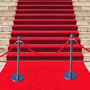 VIP Ropes, Poles & Carpet