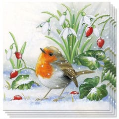 Christmas Robin Premium Luncheon Napkins 3Ply 33cm - Pack of 50