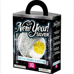 Silver New Year Party Kit for 10